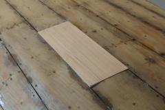Bottom Plank